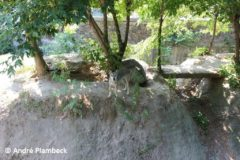 Zoo Kiew - 08.08.2014