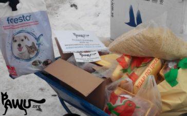 Besuch und Spendenübergabe im städtischen Tierheim Borodianka / Ukraine