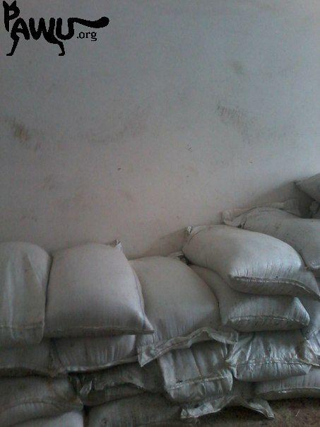Weizen für Gorlovka