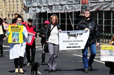 Aktion gegen Tierversuche