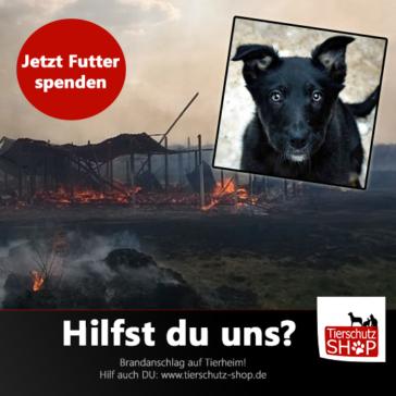 Futter und Sachspenden für A. Cisternino´s Tierheim nach dem Brandanschlag