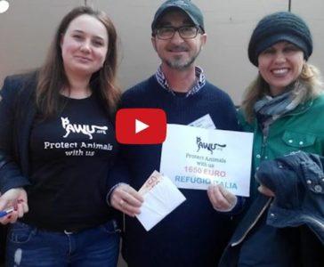 Video Dankesbotschaft von Andrea Cisternino