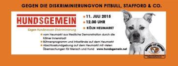 Hund ist Hund – 11.07.2015 – Köln