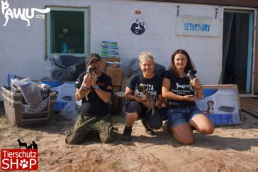 Erste Spendenlieferung im Rifugio Italia Ukraine angekommen