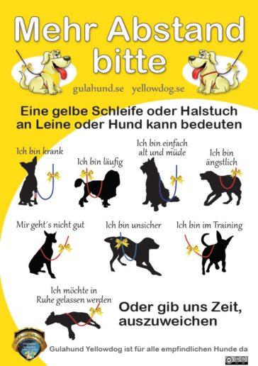 Aktion Gelber Hund – Manche Hunde brauchen mehr Abstand