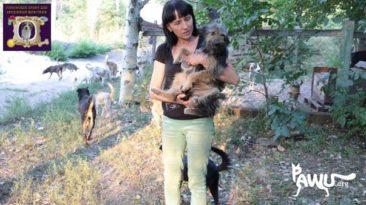 Hilfe für Gorlovka