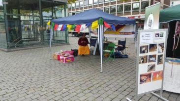 3. Kölner Tierschutfest 10.10.2015