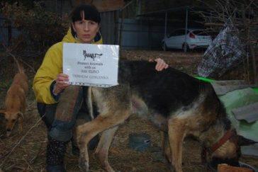 Spendenübergabe Gorlovka im Kriegsgebiet der Ukraine