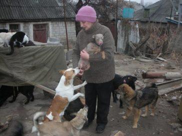 Hilfe für Lugansk (Kriegsgebiet-Ukraine)!