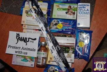 Medikamente und Hundepullis für das Tierheim Gorlovka im Kriegsgebiet der Ukraine
