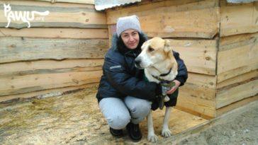 Neuigkeiten aus dem Tierheim Sirius / Ukraine