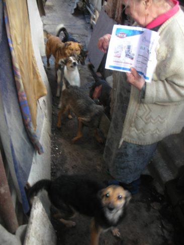 Update Lugansk, Kriegsgebiet Ukraine
