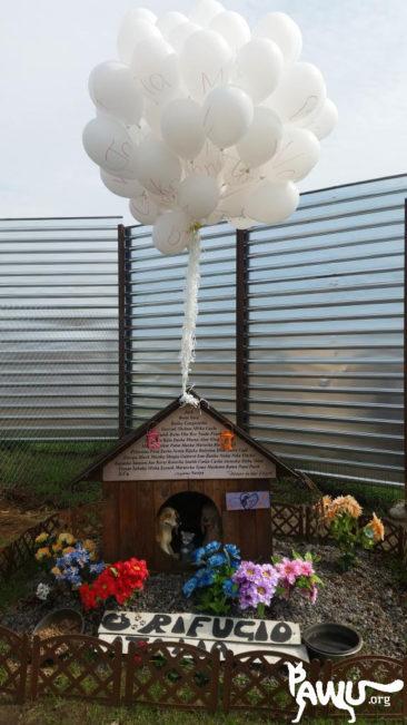 Jahrestag der Brandkatastrophe bei Andrea Cisternino
