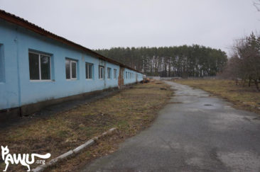 Tierheim Borodianka