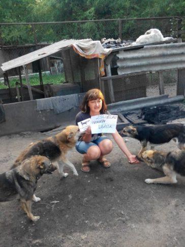 Hilfe für das Tierheim Lugansk im Kriegsgebiet der Ukraine
