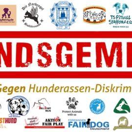 Hundsgemein – Hund ist Hund – 16.07.2016 – Köln