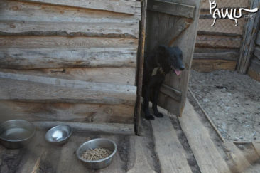 Spendenübergabe für Sirius in der Ukraine