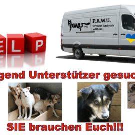 Dringend Unterstützer für Ukraine Transport gesucht!!!!