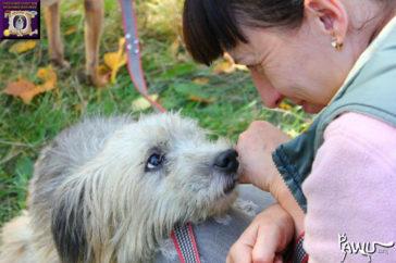 Kriegsgebiet Ukraine – Tierheim Gorlovka