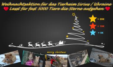 Mach mit, bei unserer Weihnachtsaktion für das Tierheim Sirius in der Ukraine.