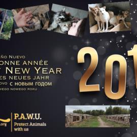 Team PAWU wünscht allen ein glückliches und zufriedenes Jahr 2017.