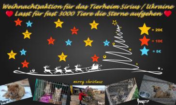 Weihnachtsaktion für das Tierheim Sirius in der Ukraine