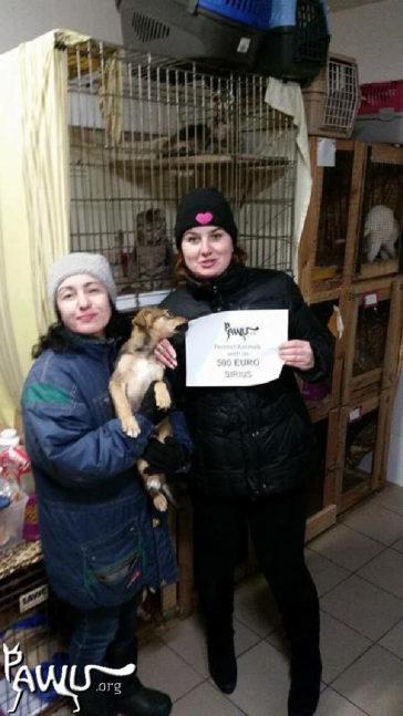 Übergabe im Tierheim Sirius mit fast 3000 Tieren / Ukraine