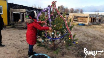 Pawu желает всем счастливого Рождества