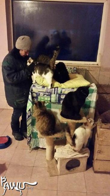 Übergabe im Tierheim Sirius