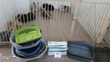 Spenden Städt. Tierklinik Kiew
