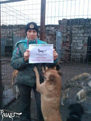Tierheim Gorlovka im Kriegsgebiet der Ukraine weiter in großer Not!!!