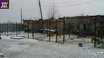 Gorlovka-Kriegsgebiet-Ukraine