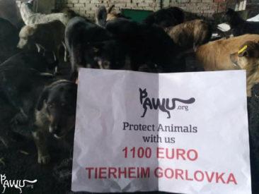 1500€ für Gorlovka