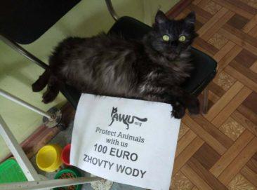 Hilfe für Zhovty Wody