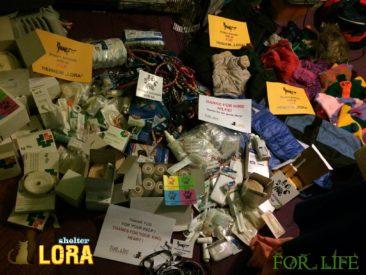 Sachspenden für das Tierheim Lora / Kiew