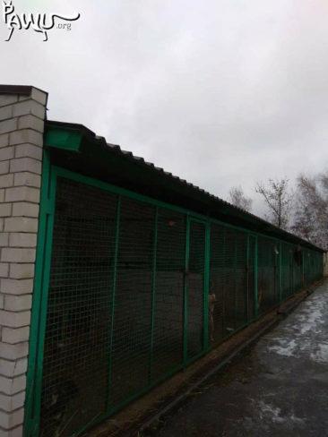 Grüße aus Donetsk