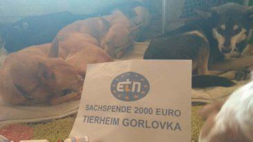 ETN Gorlovka
