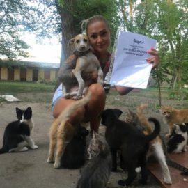 Kastration und Rettung von Straßentieren ♥