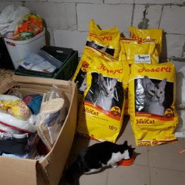 Futter und Sachspenden sind im Katzenheim Kiew angekommen ♥