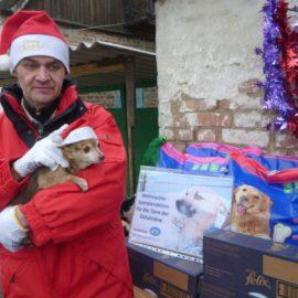 Aktion für die Tiere der Ostukraine ein voller Erfolg!!!!