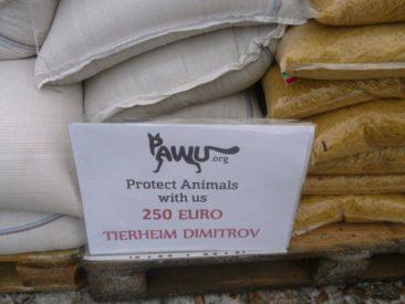 Tierheim Dimitrov