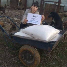 Futter für Tierheim Gorlovka im Kriegsgebiet ist da ♥