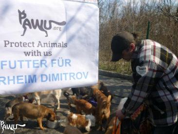 Trockenfutter für Dimitrov