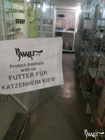 Katzenheim